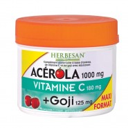 Herbesan Acérola 1000 Vitamine C + Goji x 90